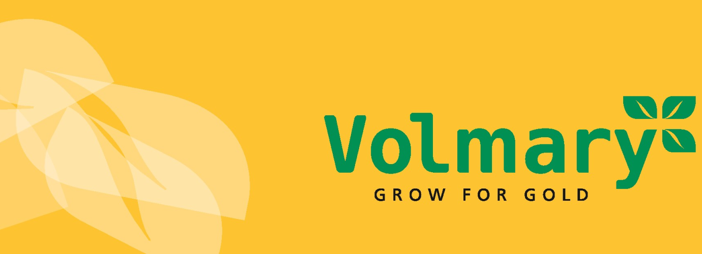 Volmary grow for gold